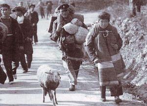 José Torrano en 1939 (el niño que lleva el borreguito)