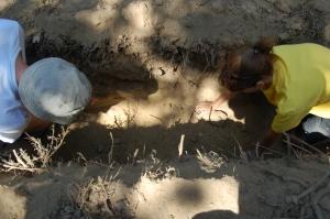 Arqueólogos en una de las  20 zanjas abiertas