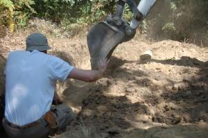 Tacto y deliacadeza utilizando la excavadora