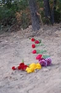 Un camino de rosas hacia la Memoria