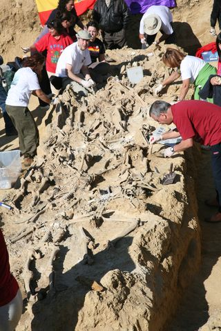 Excavación de Torquemada-Palencia