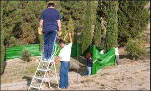 Voluntarios colocan una malla para garantizar la privacidad del trabajo, ayer. - A. ZURITA